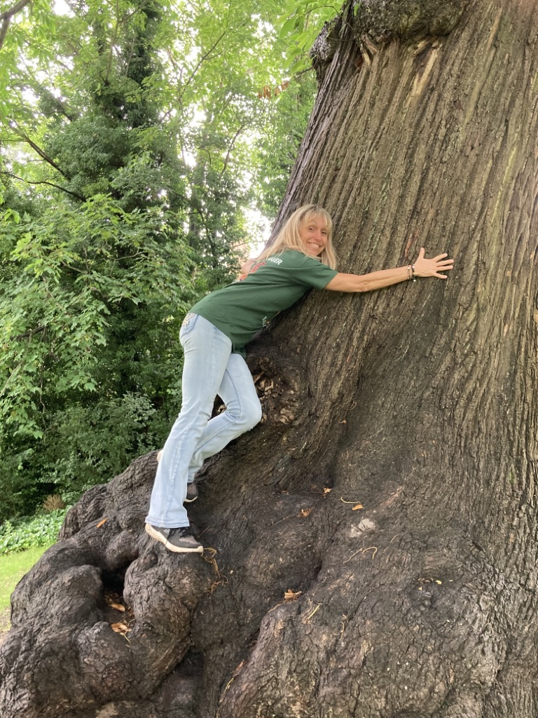 Michaela Strachan Encourages Families to Hug 100 Trees for the Rainforests