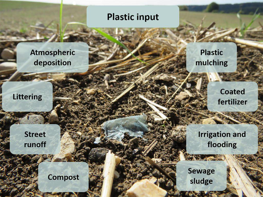 Growing Plastics